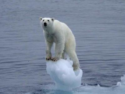Calentamiento de la Tierra